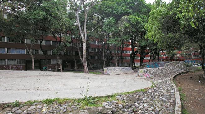 Jardín Médicos por la Paz