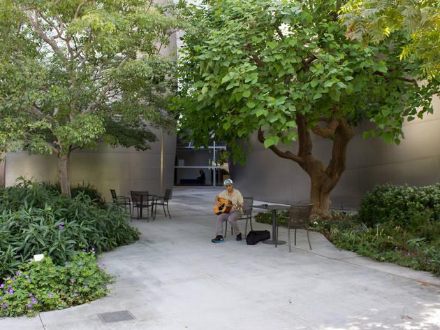 Public gardens at the Walt Disney Concert Hall.
