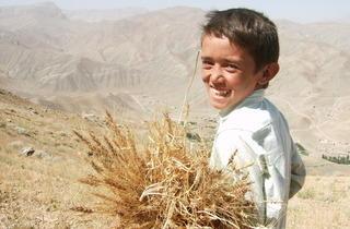 The Boy Mir – Ten Years in Afghanistan