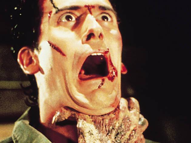 Evil Dead 2 (1987)