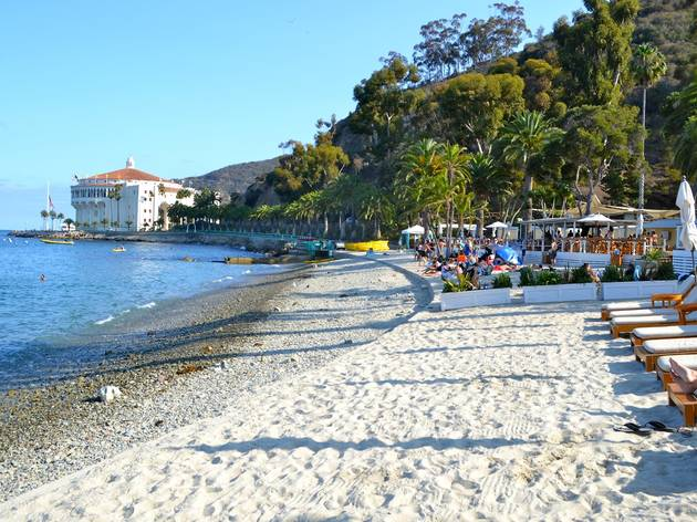 Descanso Beach Club Attractions Beaches Catalina Island Previous Next Photograph Kate Wertheimer