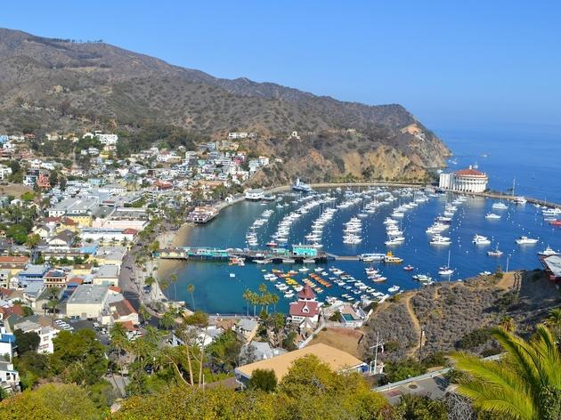 Catalina Island, and the slow pace of island time, is just a short ferry ride away.