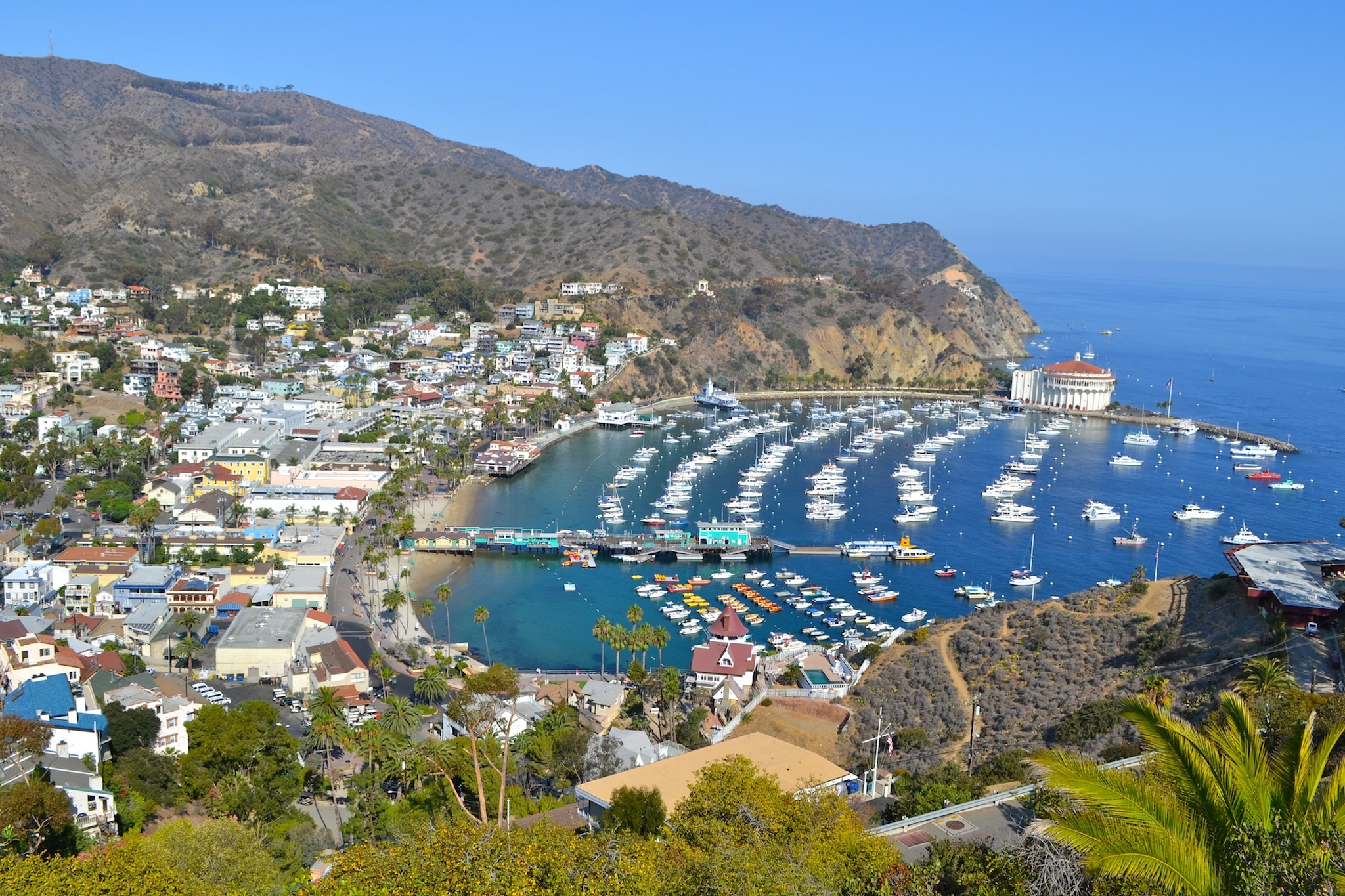 Take a day trip to Catalina