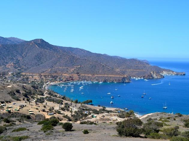 Catalina's Two Harbors