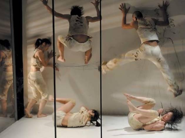 383.da.da.op.wcdance.jpg