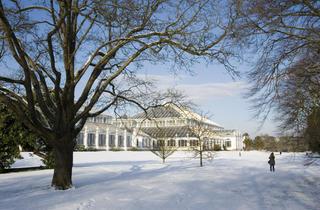 Christmas at Kew Gardens 2011