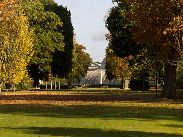 Wander Kew Gardens