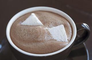 401.rb.eo.ft.hotchocolatechart.gingersnap.jpg