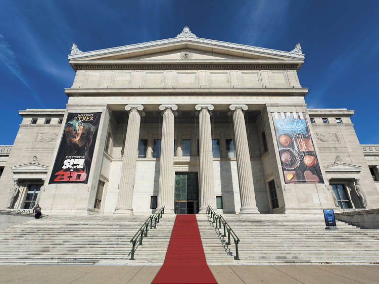 10 best Chicago museums: Top institutions to visit in Chicago