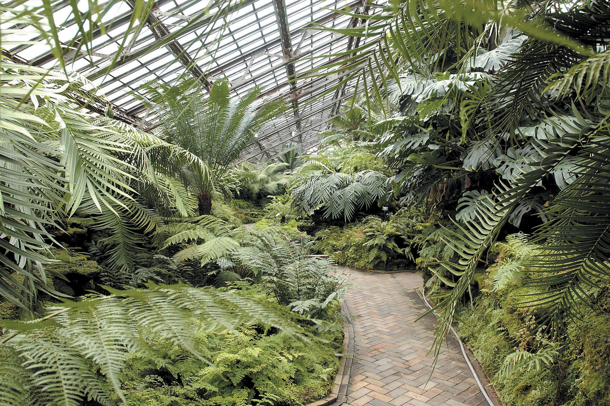 Play in the dirt at Garfield Park Conservatory