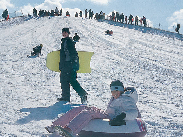 Sledding Hill At Soldier Field Sports And Fitness In Museum Campus Chicago