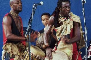 Evanston Ethnic Arts Festival