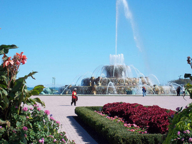 Take in the light and music display at Buckingham Fountain.