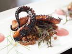 Chef Matt Eversman's new restaurant, OON, opened in the West Loop in July.