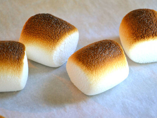 labor2013_toasted_marshmallow_day.jpg