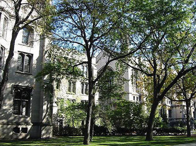 Three Illinois schools make list of top 50 LGBT-friendly colleges and universities