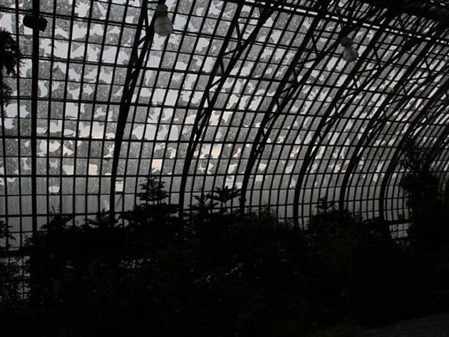 Garfield Park Conservatory Grand Re-Opening