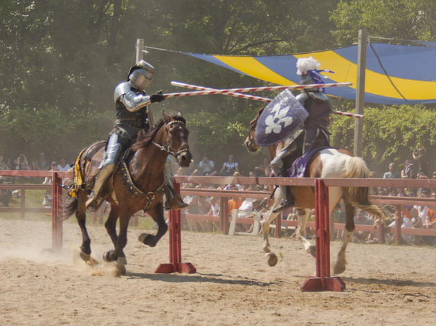 Bristol Renaissance Faire  Things to do in Chicago