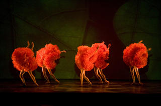 (Photograph: Courtesy of MOMIX)