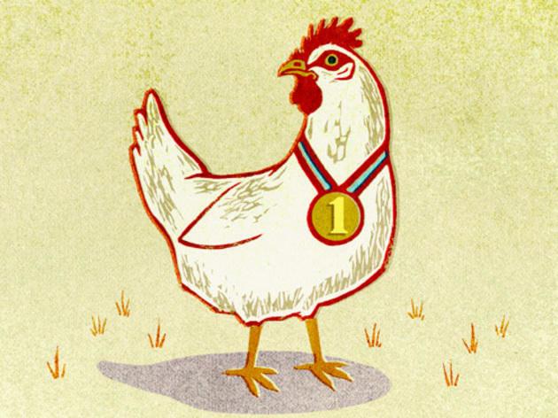 349.rb.eo.op.chicken.jpg
