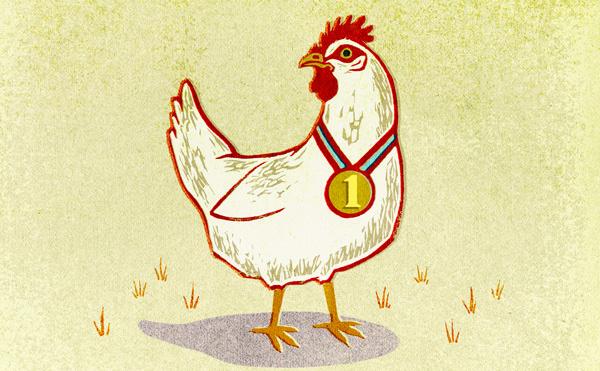 In defense of chicken