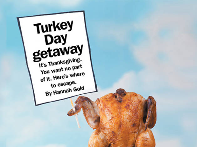 352.fd.turkeypageFINAL.jpg