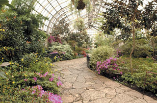 352.at.wk.cp.lincolnparkconservatory.jpg