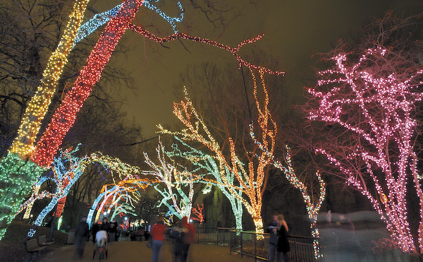 Free things to do in December