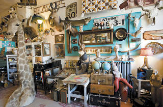 Woolly Mammoth Antiques and Oddities Shop in Andersonville.