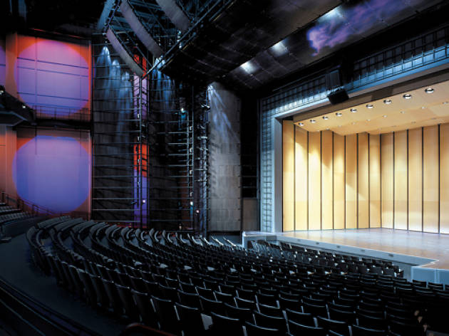 A stripped-down, love-it-or-hate-it design and excellent acoustics and sight lines are the Harris Theater's claims to fame.