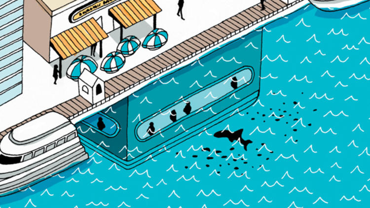 Illustration: Ian Dingman