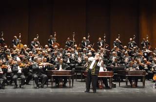 Orchestre Symphonique des 100 Violons Tziganes de Budapest