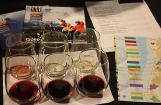 Chilean Vino Classes