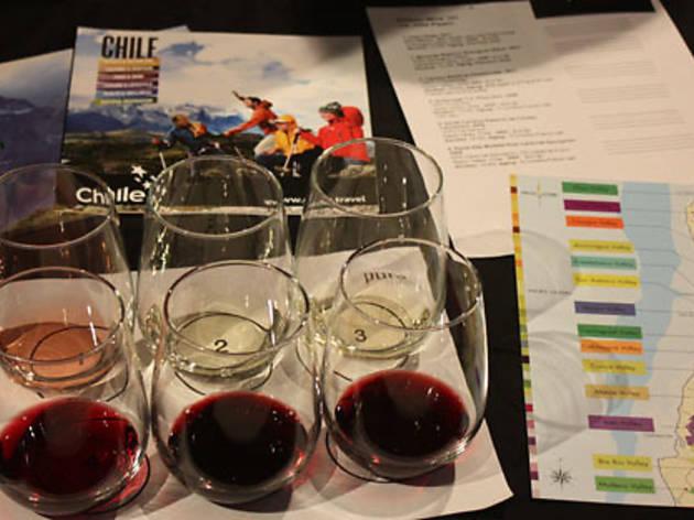 Chilean Vino Classes