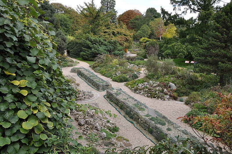 Jardin alpin attractions in 5e arrondissement paris for Jardin plantation
