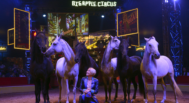 Big Apple Circus image