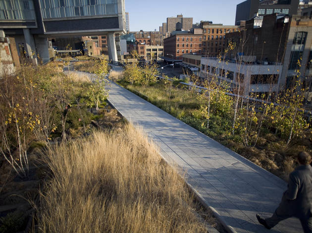 Take a tour on the High Line