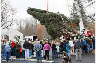 2013 Rockefeller Center Christmas tree