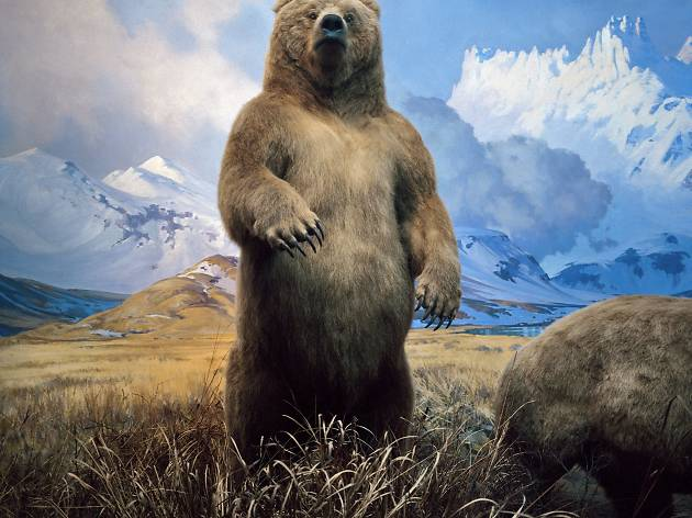 Karl Grimes ('Brown Bear', 1998)