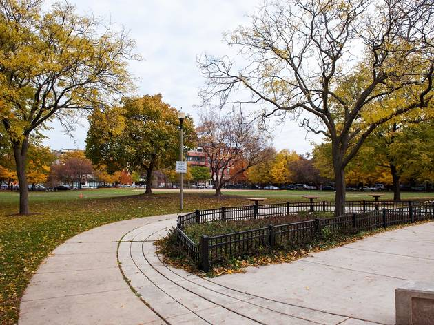 Jonquil Park