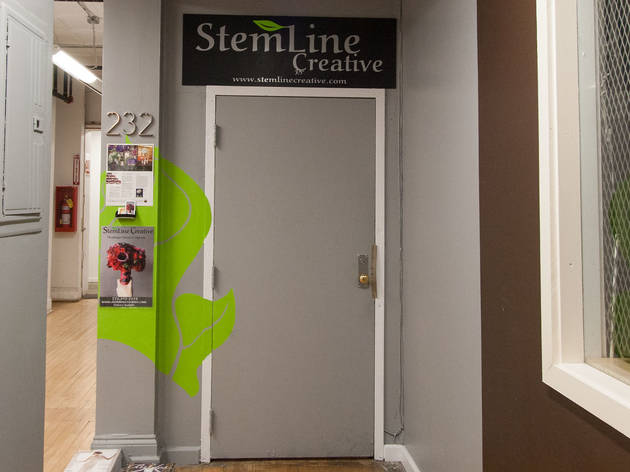 StemLine, Creative