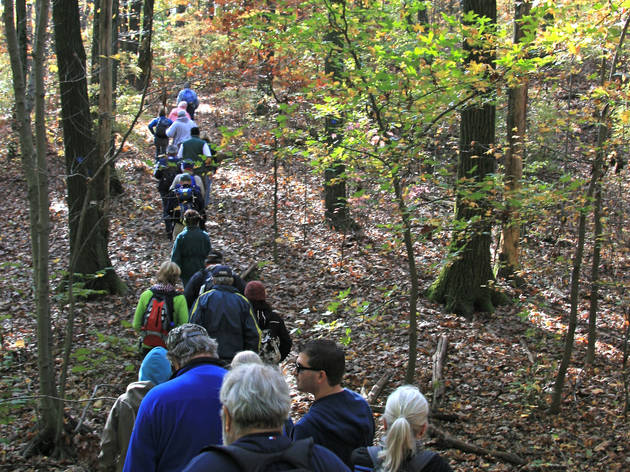 Tenth Annual After-Thanksgiving Hike