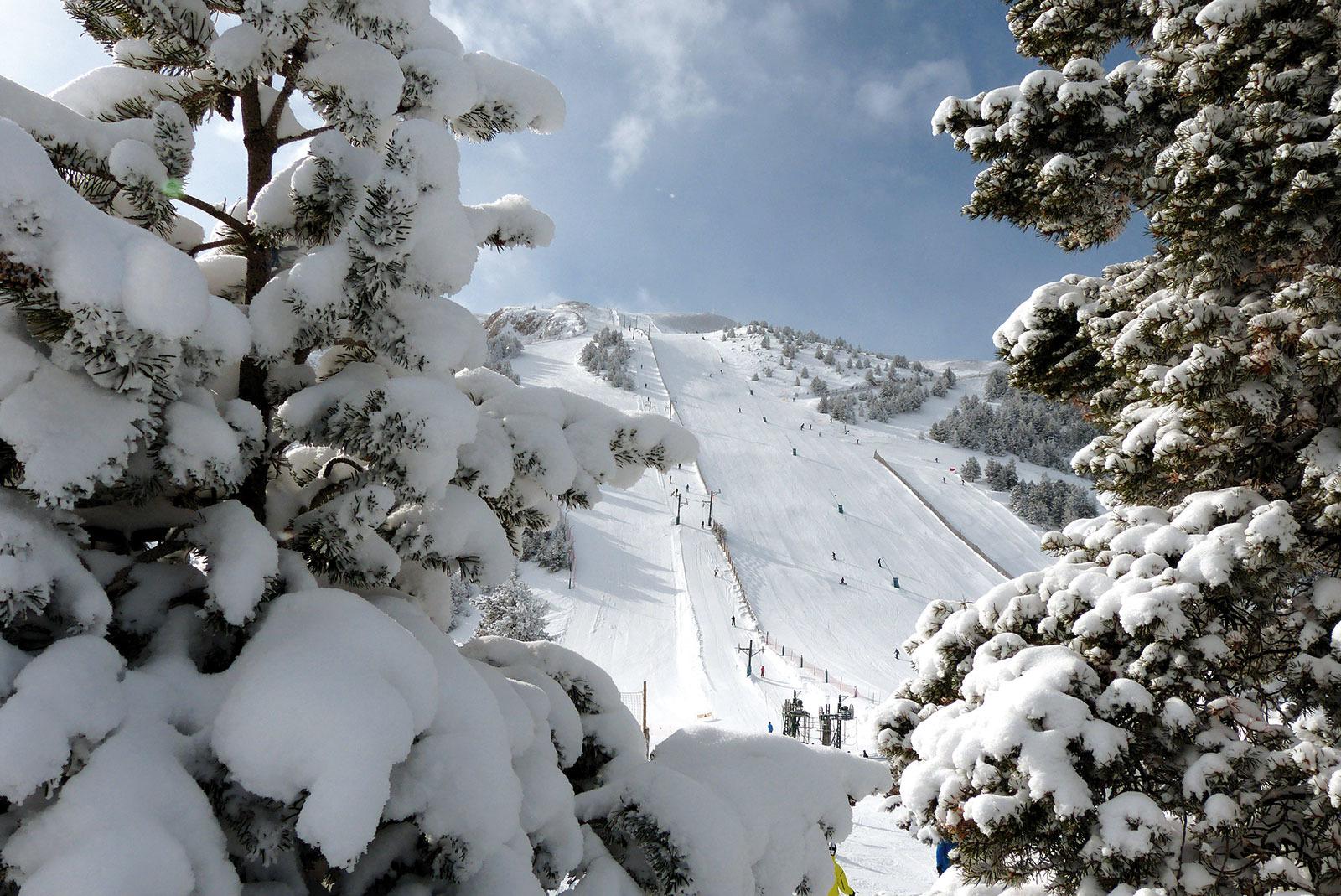 50 ideas para disfrutar de la nieve