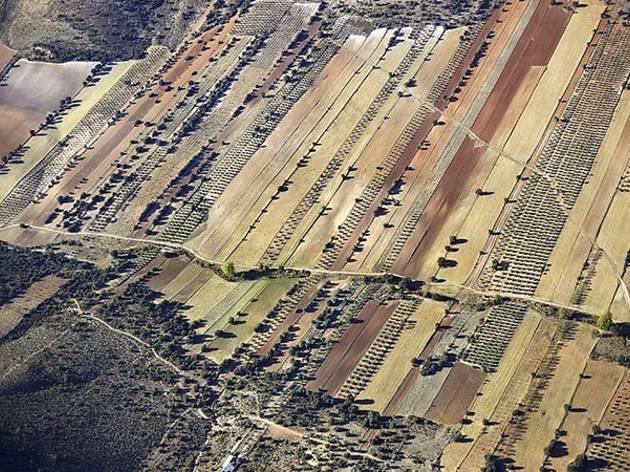 """Emmet Gowin, """"Landscapes Andalucía"""""""