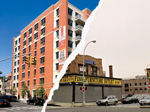 Bronx Gentrification Conference
