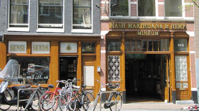 Hash Marihuana & Hemp Museum, Nightlife, Amsterdam