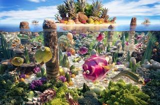 Coralscape (© Carl Warner)