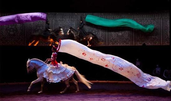 'Calacas', théâtre équestre Zingaro