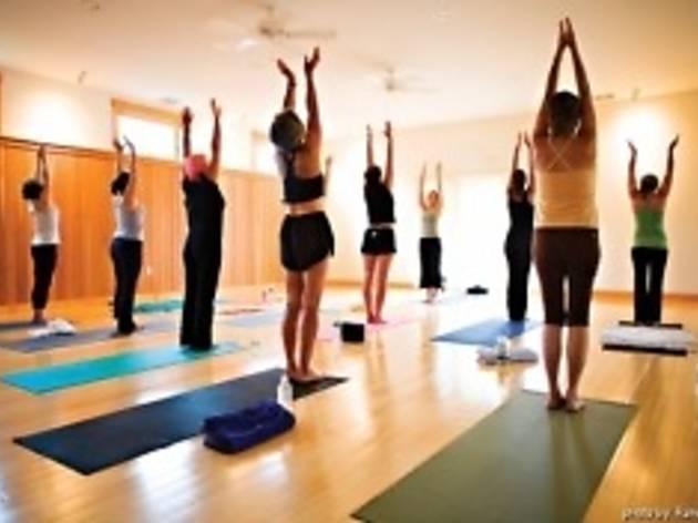 Yogalates Fitness at Tree of Life Yoga & Wellness