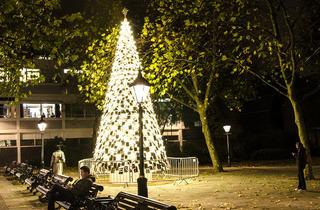 Chelsea Christmas tree